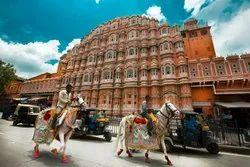 Taj And Tigers Tour