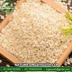 Organic Sesame White Dehulled