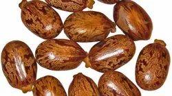 Castor Seeds, Pp Bags, Packaging Size: 25 Or 50 Kg