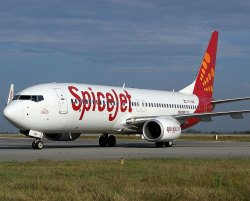 SpiceJet Air Cargo Service, Is It Mobile Access: Mobile Access