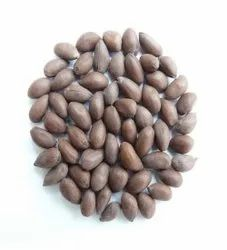 Research Hybrid Cotton Seeds, Packaging Type: PP Bag, Packaging Size: 25 Kg