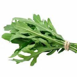 Green Rocket Leaves, Packaging Type: Bag, Grade: A Grade