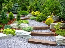 Front Yard Home/Residence Landscape Designing Service, Coverage Area: <1000 Square Feet