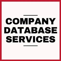 ISO9001 Company Database Services