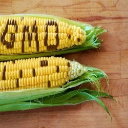 In House GMO Testing Service, Analysis Type: Physical/Chemical Properties, Pan India