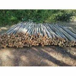 Brown Round 15 Feet Eucalyptus Wood Pole
