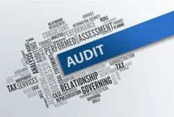 Consulting Firm Account Auditing Services