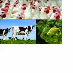 Biotech Animal Healthcare