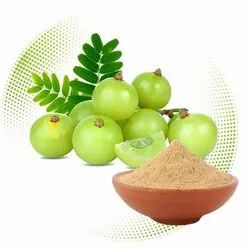 Phyllanthus Emblica Panacea Amla Dry Extract, Packaging Type: HDPE Drum, Packaging Size: 25 Kgs