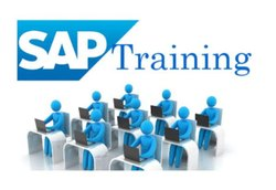 Remote SAP ECC/EWM/GRC/S4HANA/ BW S4HANA Server Access and Training Services