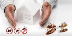 Home Chemical Treatment Cockroaches Pest Control Services