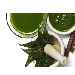 Neem Azadirachta Indica Liquid Extract
