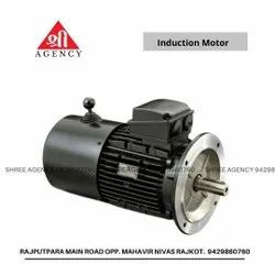 Havells 3 Phase Induction Motor