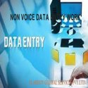 Data Entry Non Voice Project