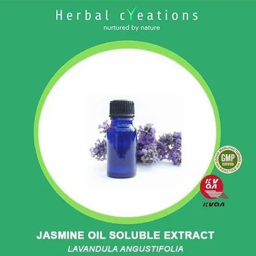 Herbal Creations Jasmine Oil Soluble Extract Lavendula Angustifolia, Packaging Type: Hdpe Can