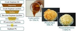 SOYA Phosphatidylcholine