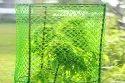 HDPE Garden Fencing Nets & Tree Guard Nets