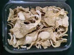 Natural Maharashtra Mushroom And Mushroom Products