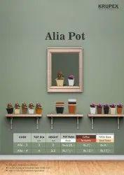 alia flower pot