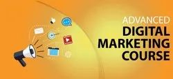 Unlimited 3 Month Digital Marketing Training Services