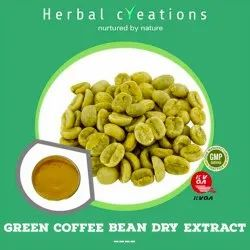 Powder Green Coffee Bean Dry Extract