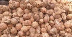 A Grade Solid Semi Husked Coconut, Coconut Size: 13 Inch