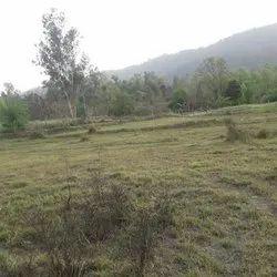 4.5 Bigha Land For Sale In Nadaun Distt Hamirpur Himachal Pradesh, Size/ Area: 36000 Sq Ft
