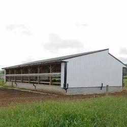 Poultry Farm Sheds