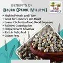 Grammy Pearl Millet, High In Protein