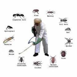 Pest Control Management Services