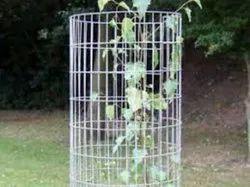 Tree Guard Welded Wire Mesh