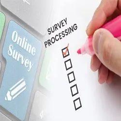 Survey Processing Services