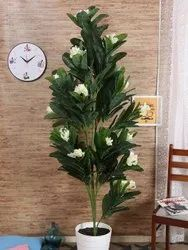 Green And white Artificial Frangipani Champa Plant Without, For Weddings, Size: 15 Cm X 15 Cm X 165 cm