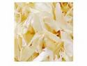 Rr Dehydrated White Onion Flakes Kibbled, Packaging Type: Hdpe Bag, Packaging Size: 20kg