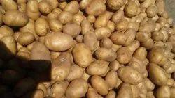 A Grade Punjab Fresh Potato Vegetable, Gunny Bag