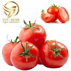 杂交类新鲜的红色西红柿