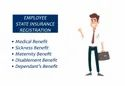 Esi Registration For Firm