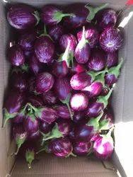 A Grade Purple Fresh Brinjal, Carton, 20 Kg