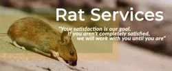 Its Depends On Area Commercial Rodent Management Service, Delhi & Ncr
