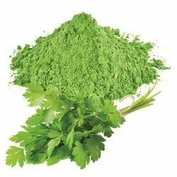 STC Dehydrated Coriander Leaves Powder, Packaging Size: 10 Kg, Packaging Type: Packet