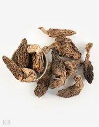 A Grade Dried Mushroom Guchchi / Morel Mushrooms