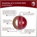 Club Pro Red Cricket Ball