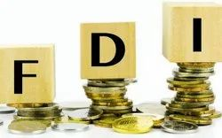 Foreign Direct Investment Service