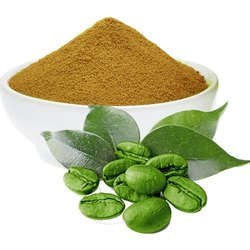 Green Coffee Beans Extract Powder, Packaging Size: 25 Kgs
