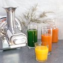 Angel Cold Press Juicer Twin Gear Type