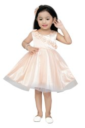 Satin Peach Baby Girls Dress
