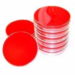 Sheep Blood Agar Plate