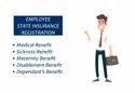 Esi Registration For Company