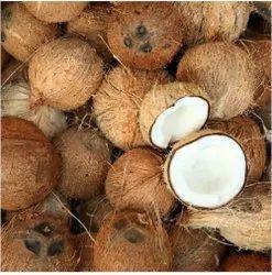 A Grade Solid Fresh Mature Coconut, Coconut Size: 13 Inch
