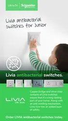 Plastic Schneider Electric Livia Switches Sockets